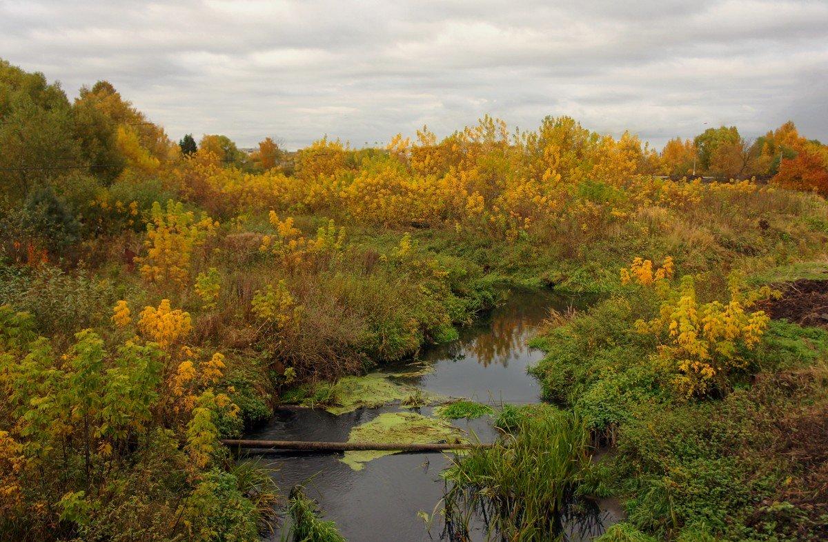 Разбросала осень краски, возле маленькой реки... - марк