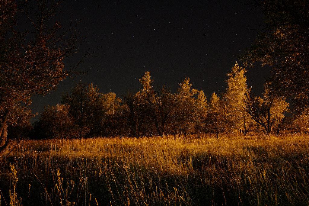 ночь - sergeu46 Рагулин