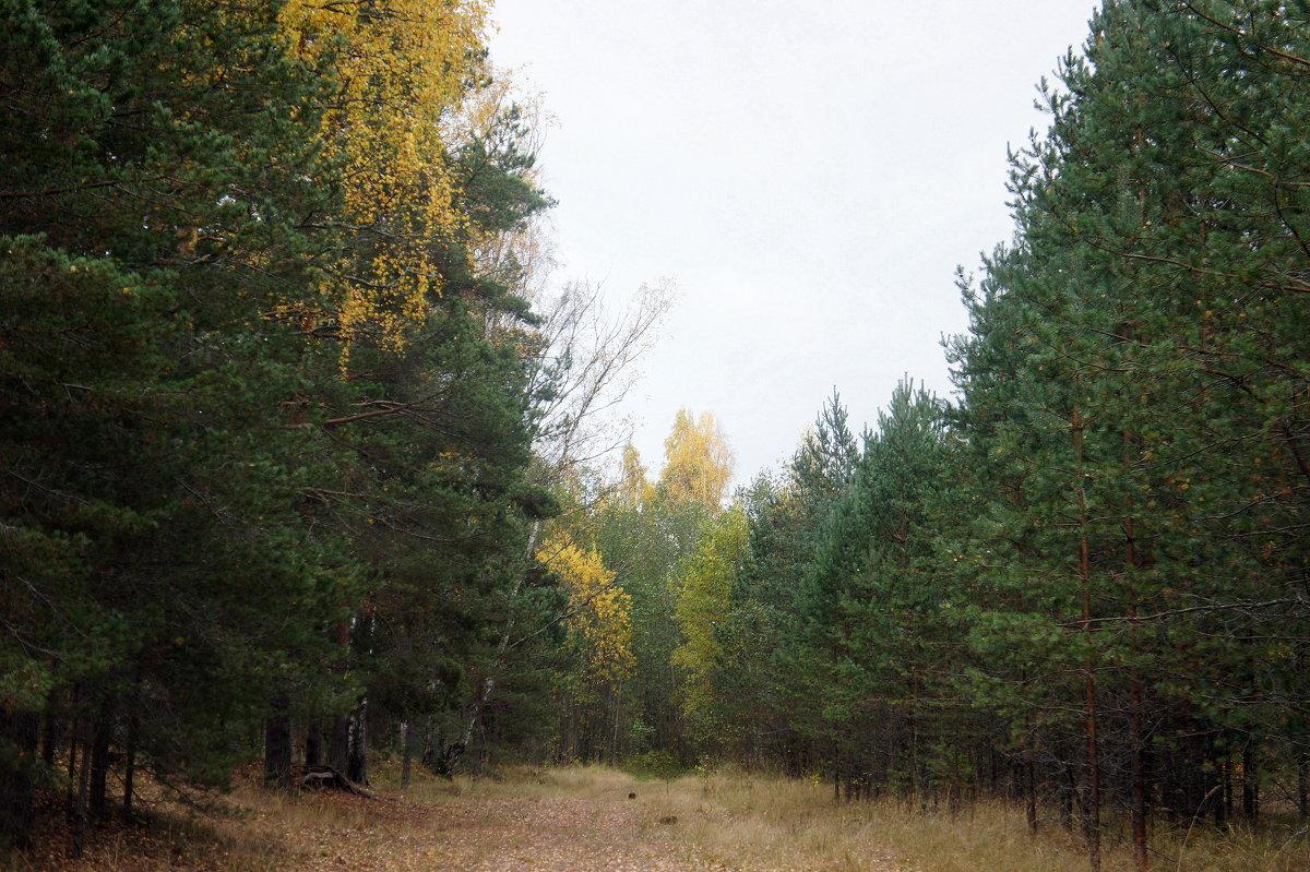 Октябрь - Елена Павлова (Смолова)