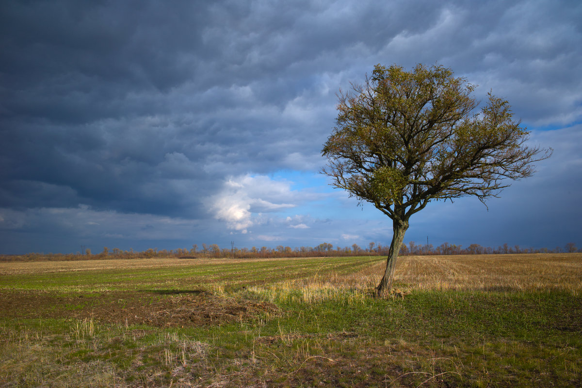 Осень - Олег Гроник
