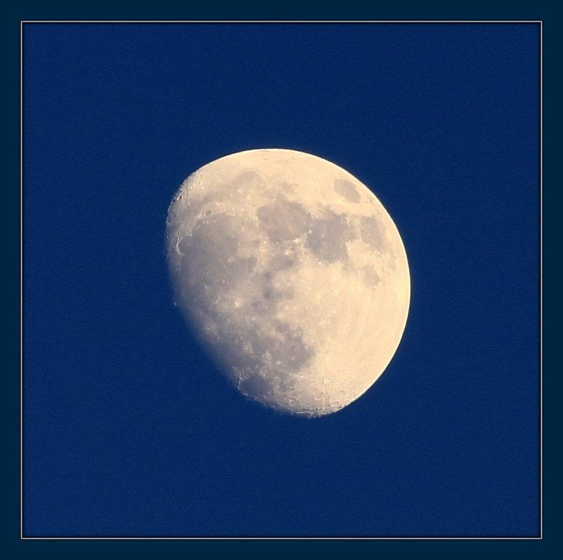 луна - ninell nikitina