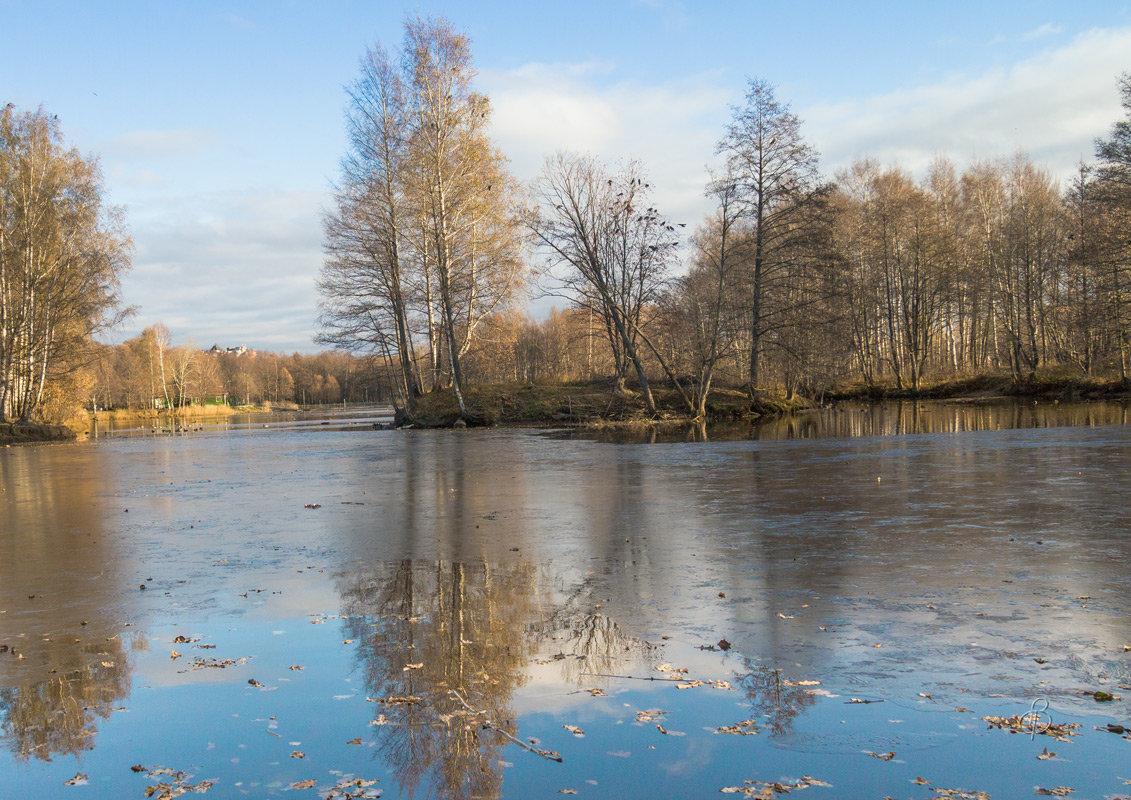 Утренний ледок - Виталий