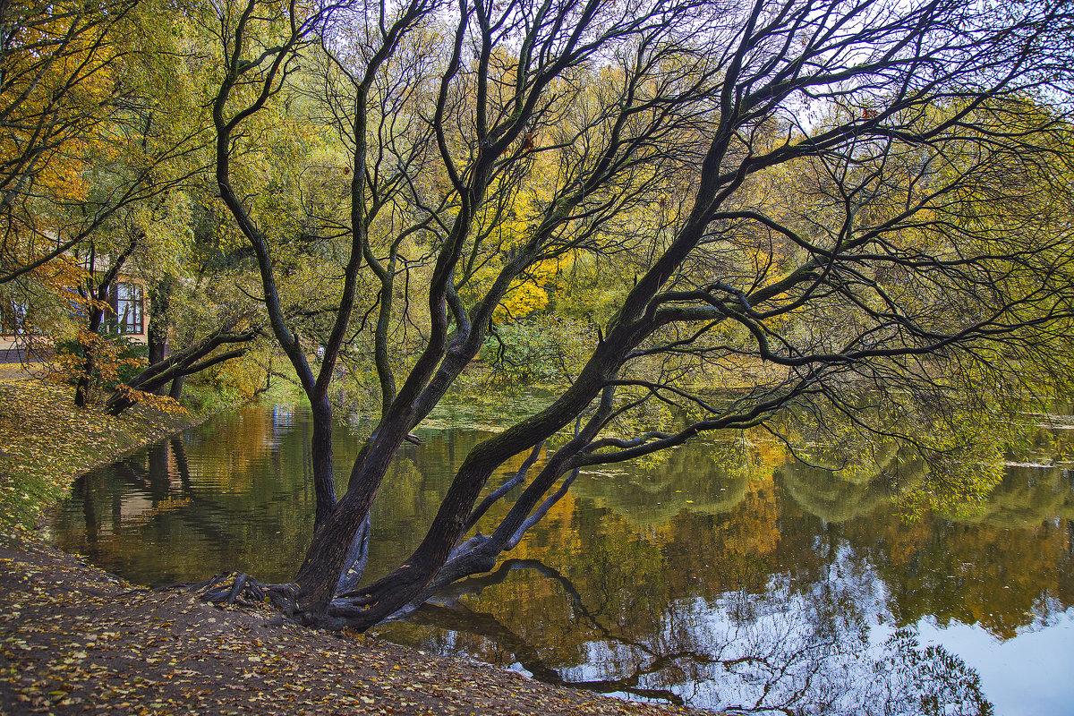 Осень ... - Viacheslav Birukov