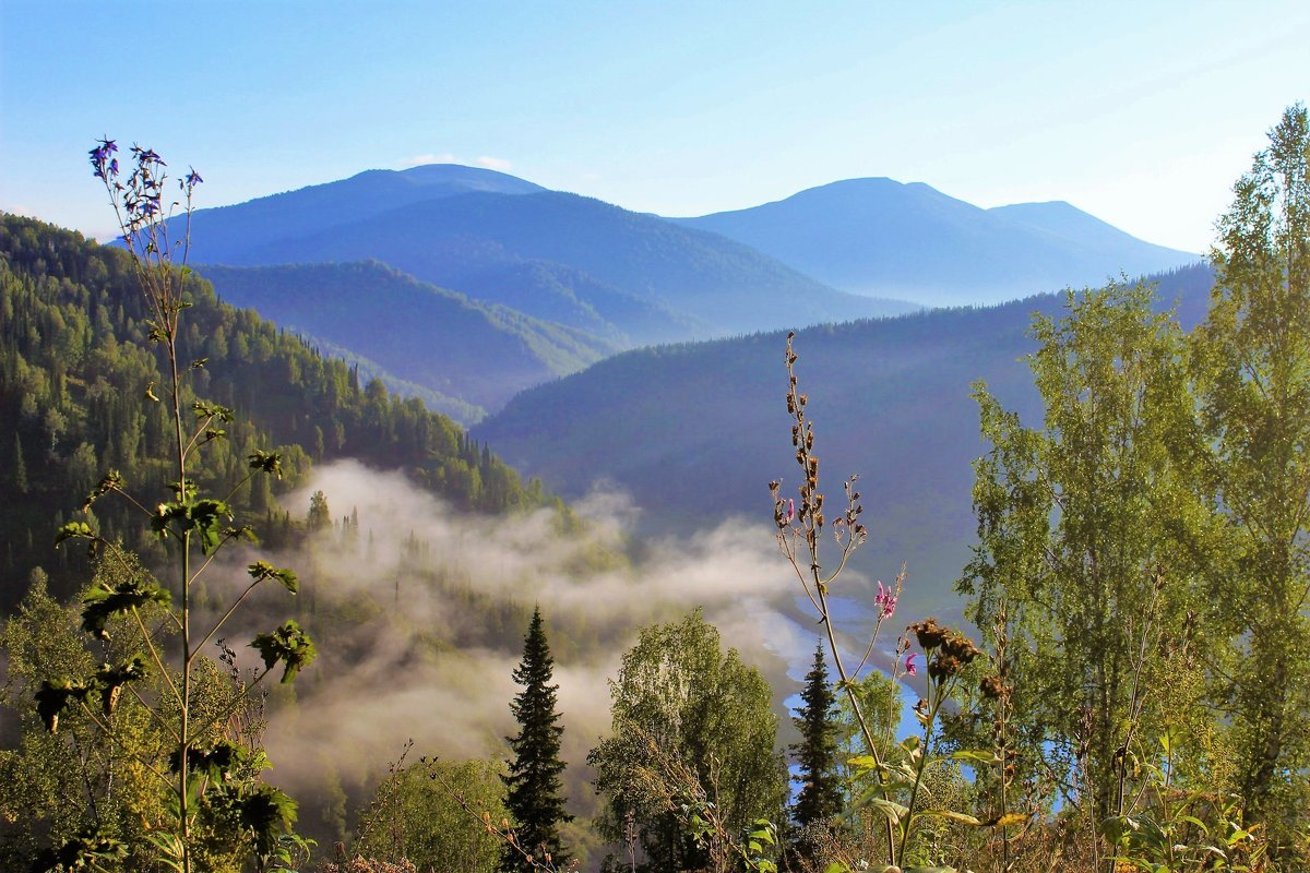 Туман покидает долину - Сергей Чиняев