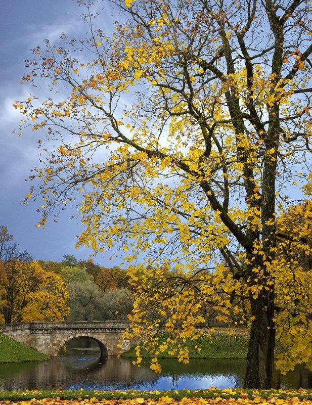 золотая осень - ник. петрович земцов