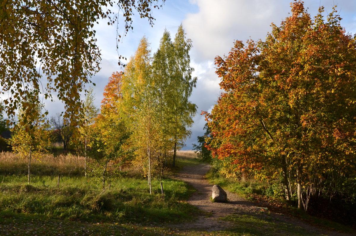 Осень в октябре - Ирина Никифорова