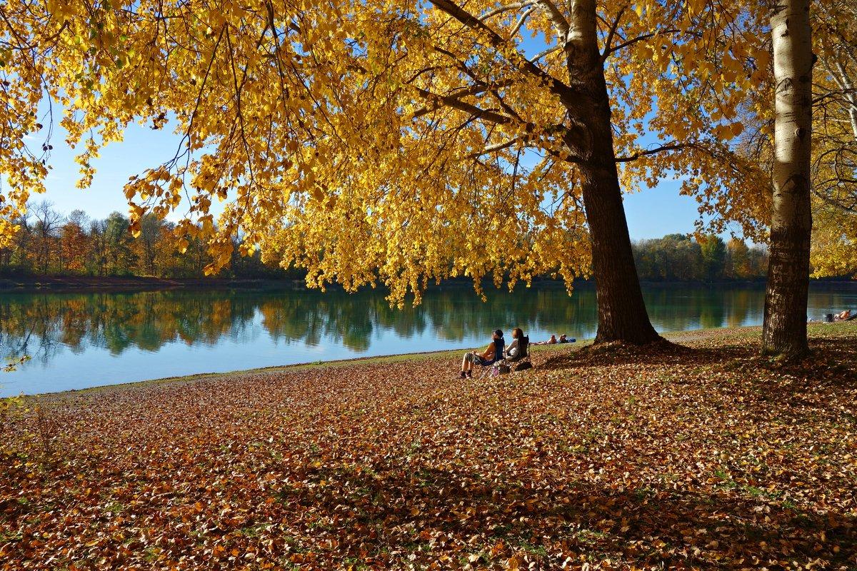 """""""Хотите тишины? Зайдите в Осень! Здесь тихо, нежно и уютно очень..."""" - Galina Dzubina"""
