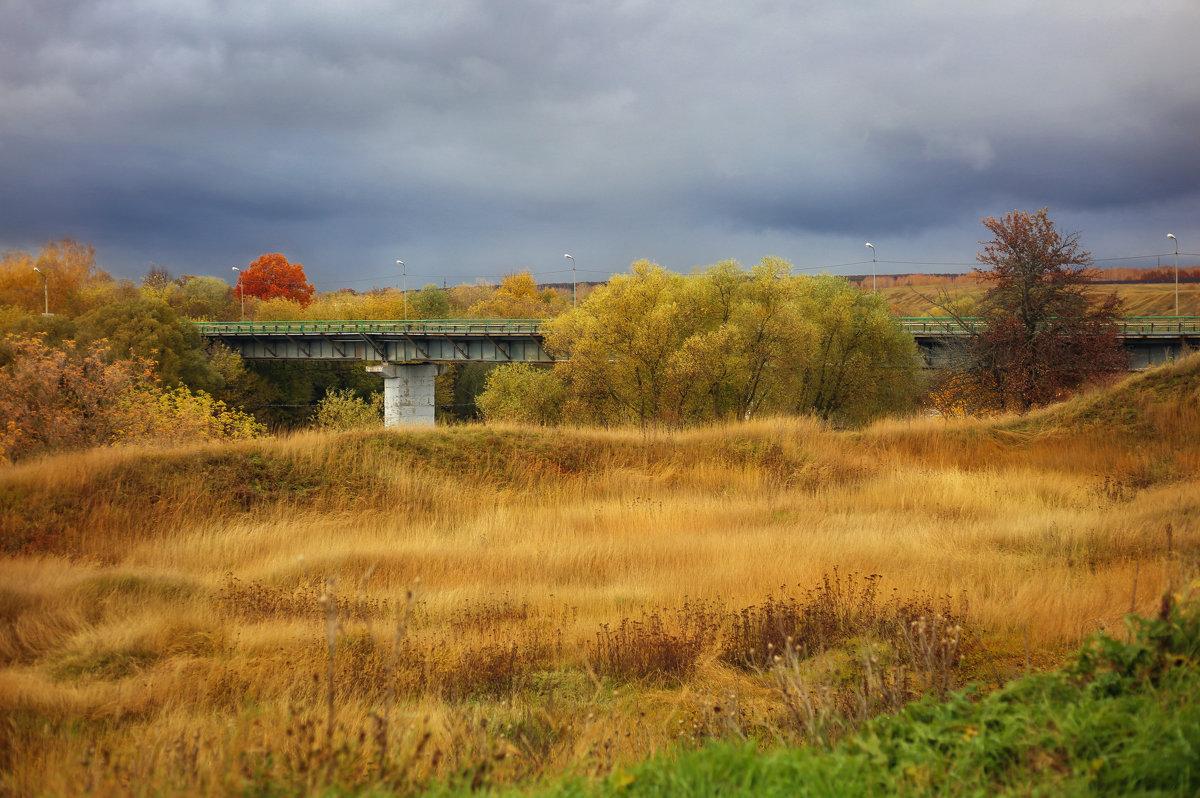 Мост - Мадина Скоморохова