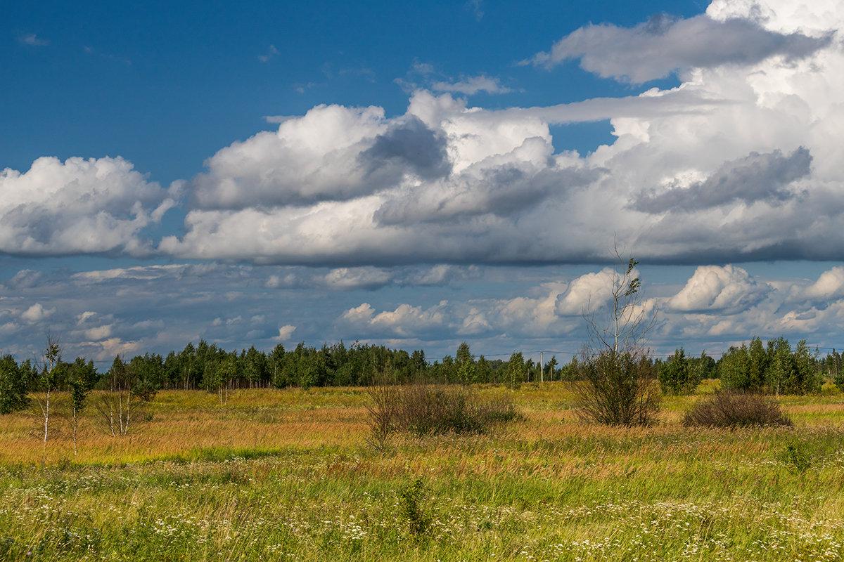 А по небу степенно плывут облака - Игорь Сикорский