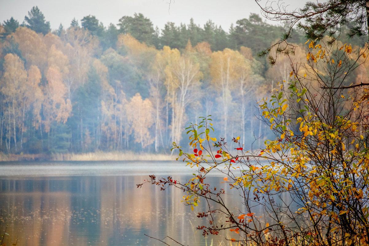 Озеро - Татьяна Баценкова