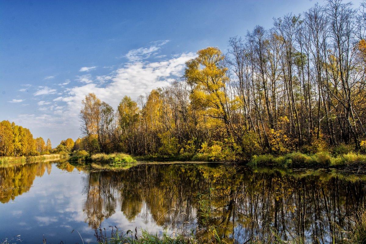 Autumn - Dmitry Ozersky
