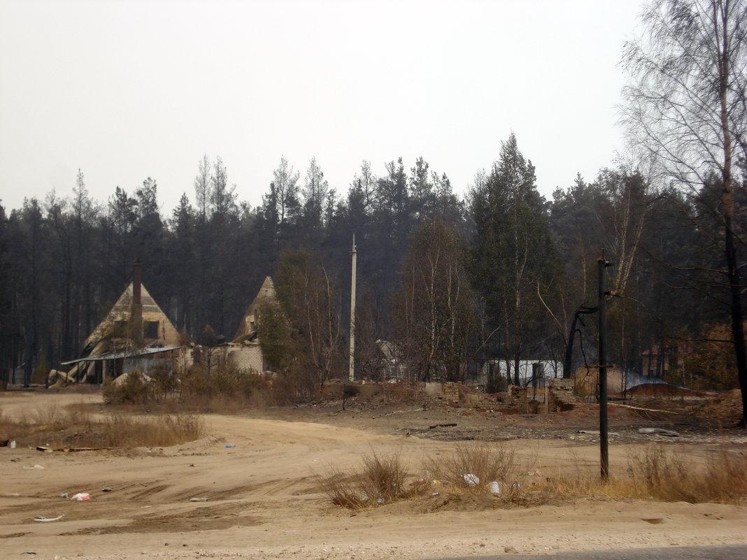 Природные пожарища Рязанщины в августе 2010 года - Николай Варламов