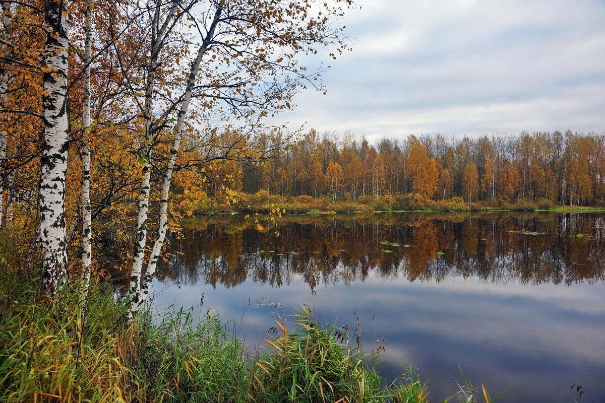 Осенний этюд. - Юрий Шувалов