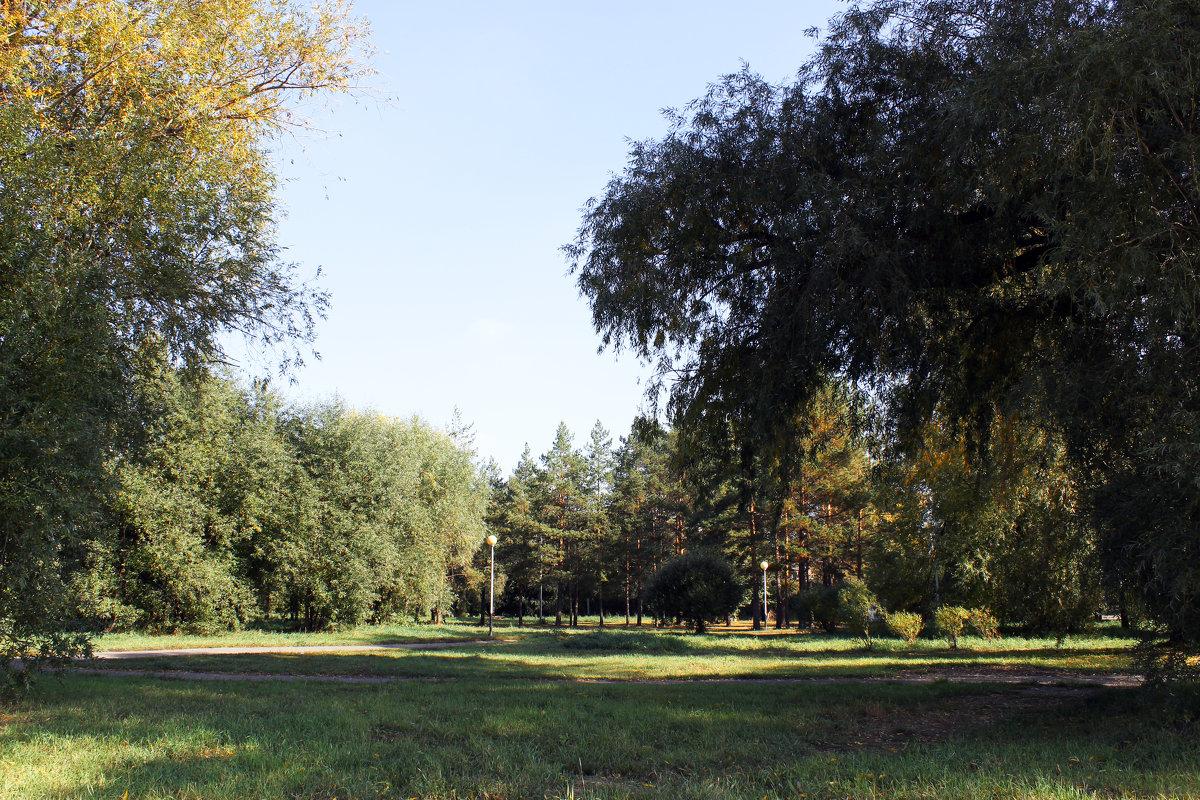 Лесная поляна - раиса Орловская