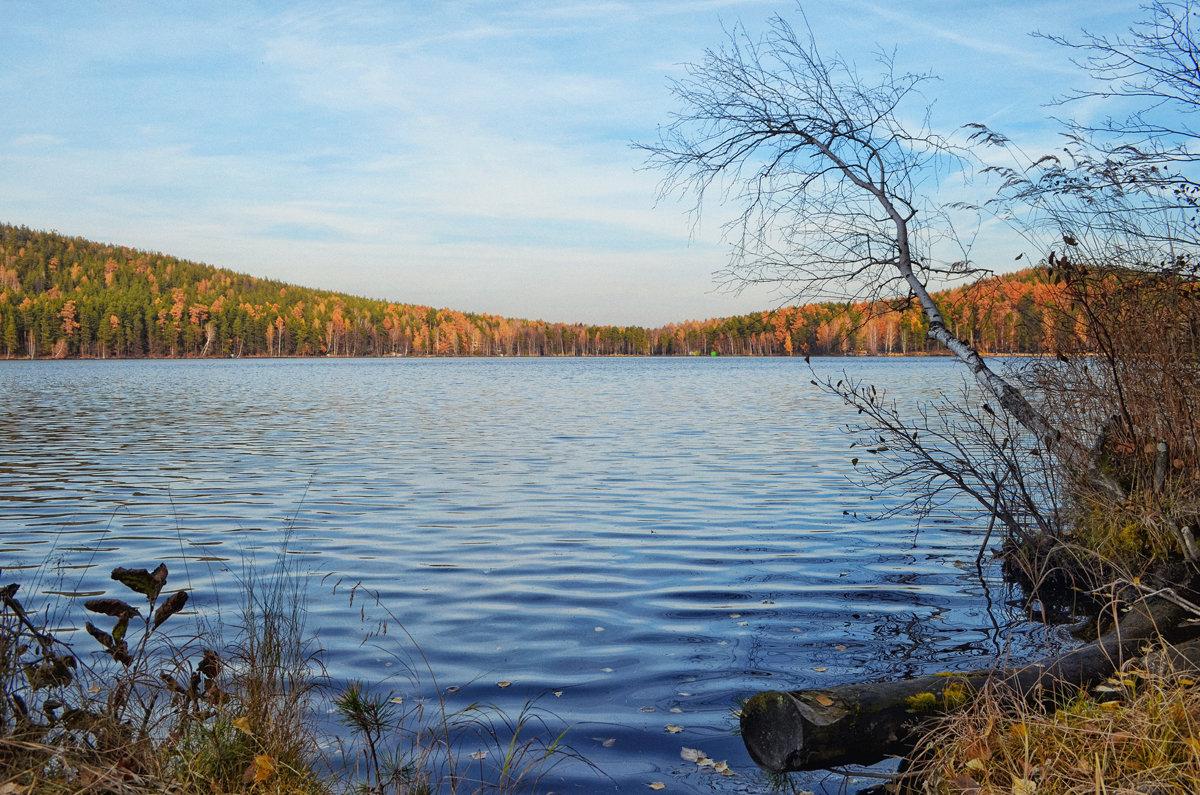 Осень на озере - Михаил Вайсман