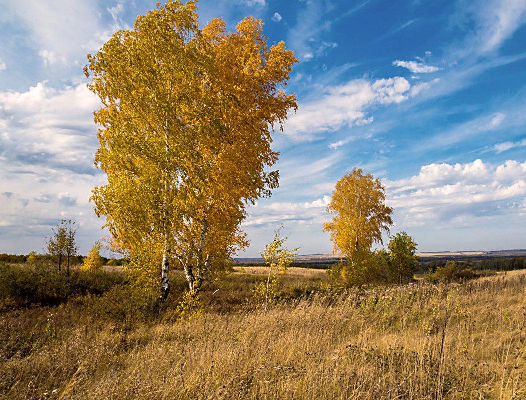 Золотая осень - Любовь Потеряхина