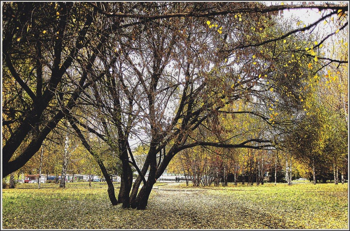 Октябрь в парке - muh5257