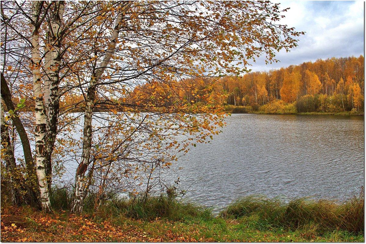 Однако, осень... - Вячеслав Минаев