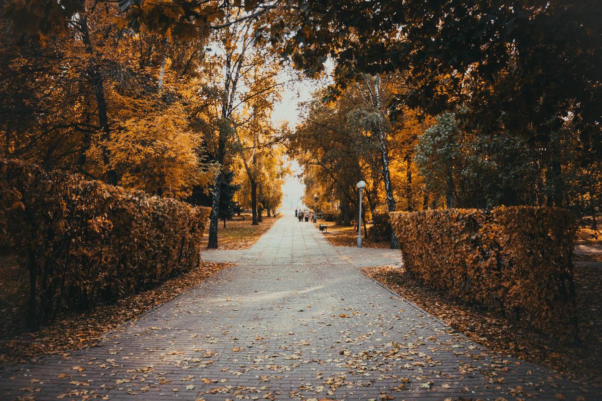 Осень - ProFi ******