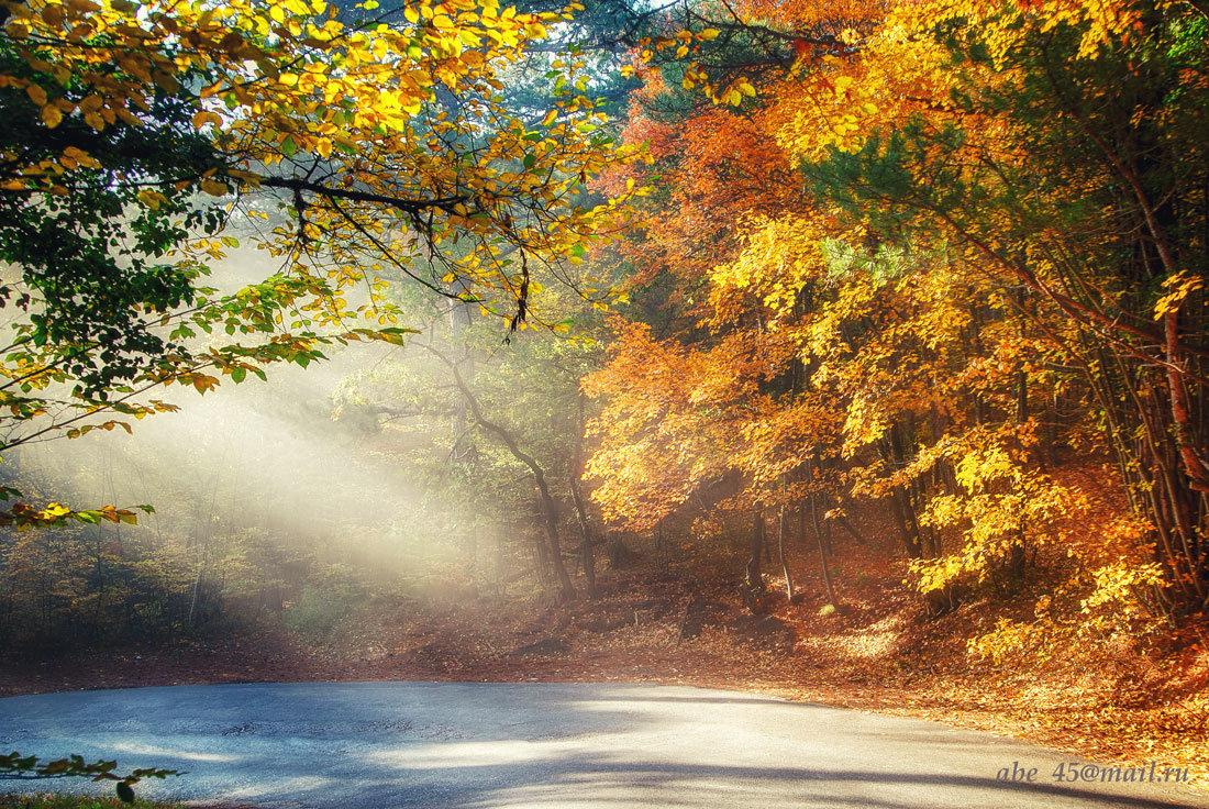Осенние краски Крыма - Николай Ковтун