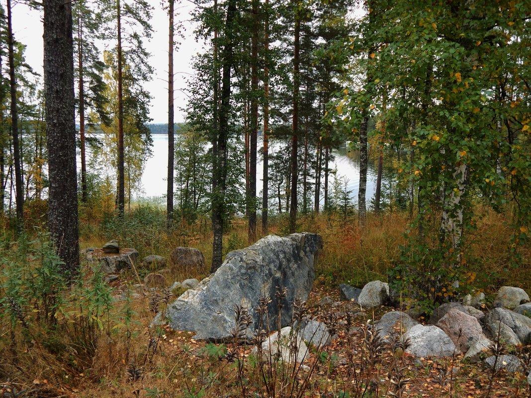 Страна Suomi. Берег озера Сайма. - Лариса (Phinikia) Двойникова