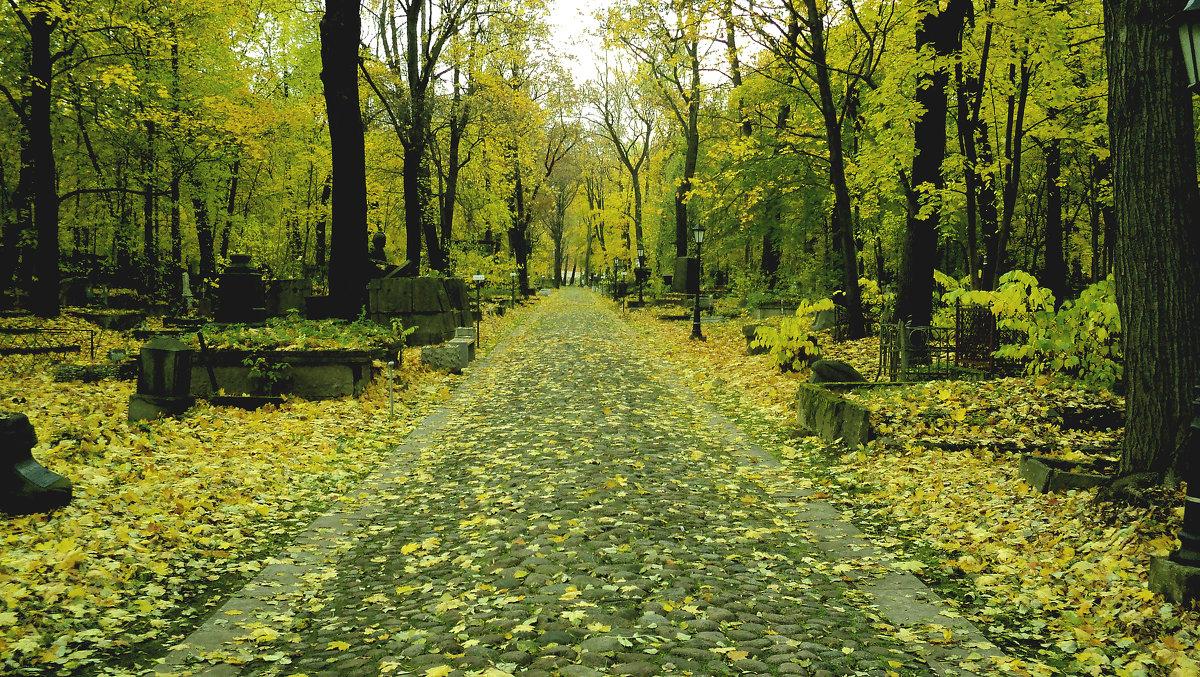 Осень - Андрей Маталин