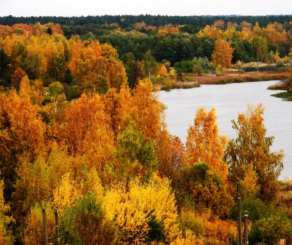 Осень - Александр Михайлов