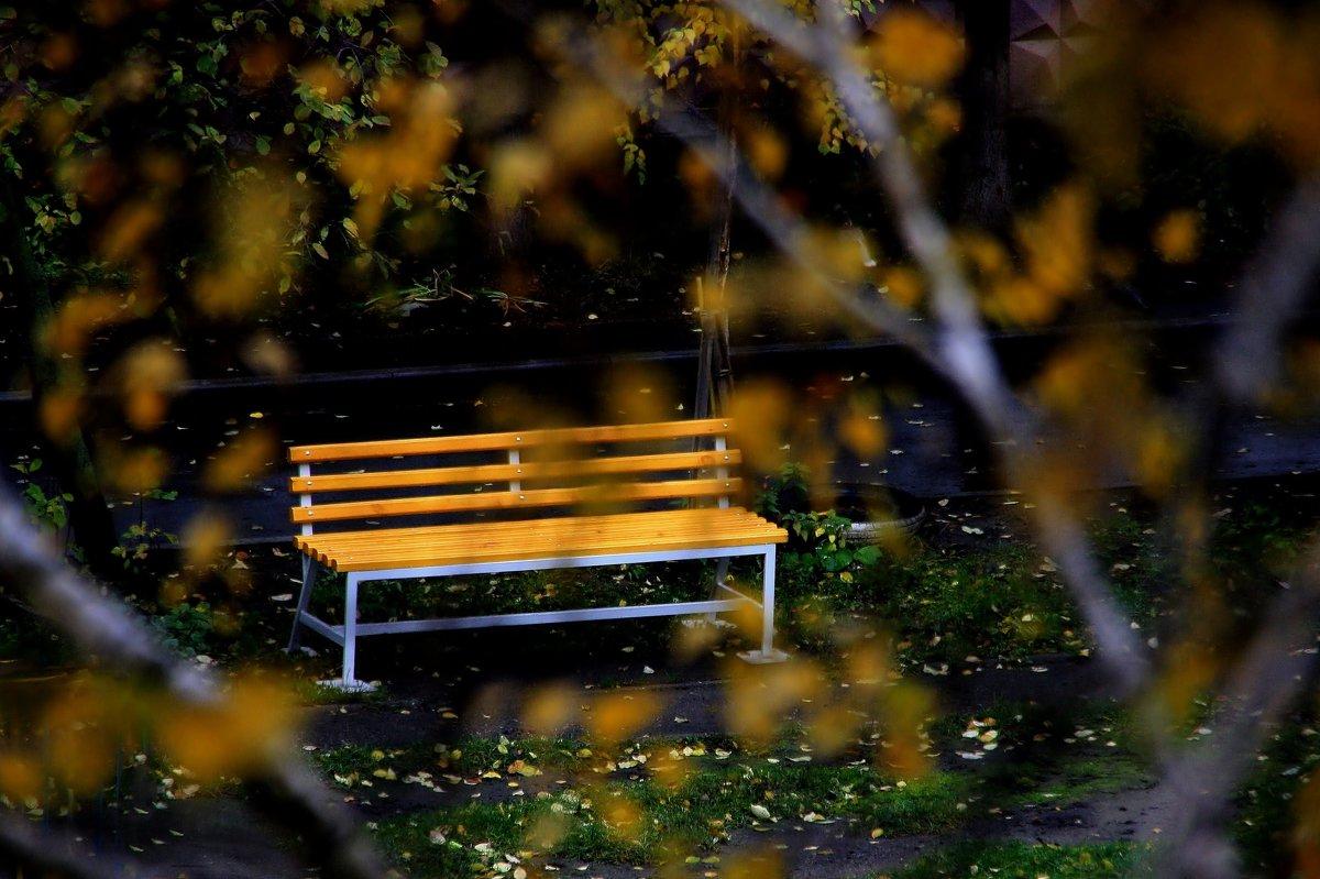 Желтая скамейка. - Валерия  Полещикова