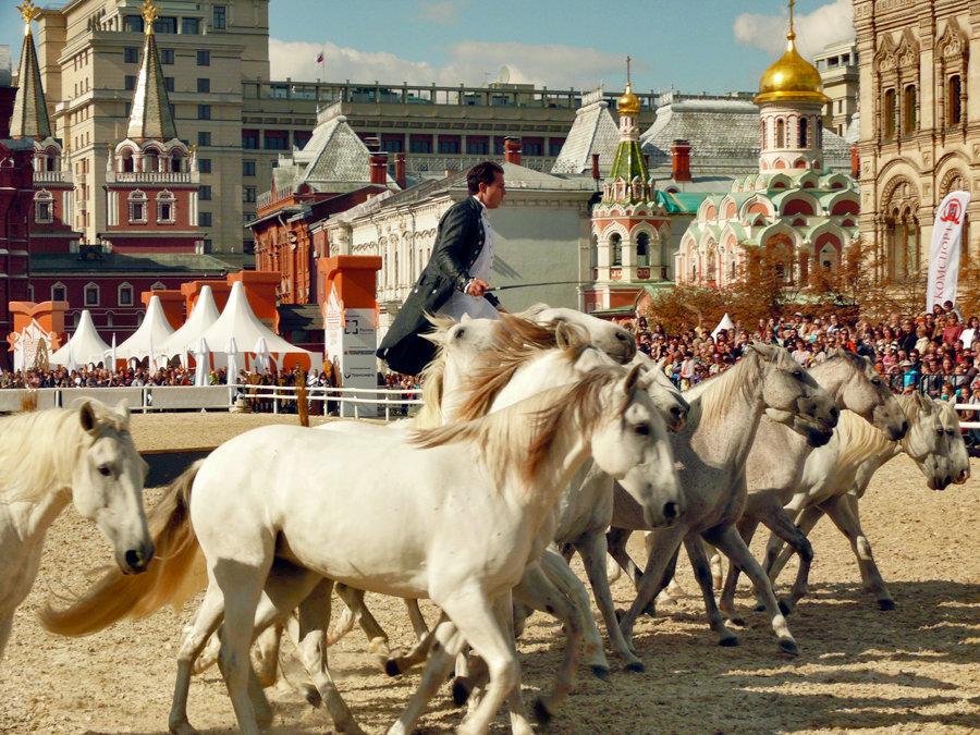Белые Кони Авалона - Vera Ostroumova