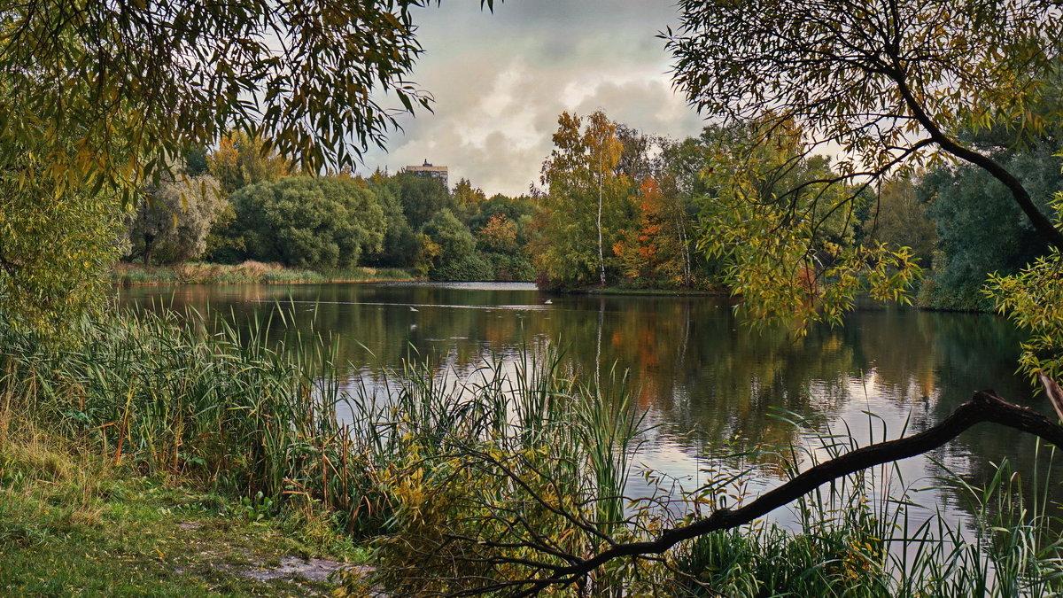 Озерцо - Владимир Гилясев