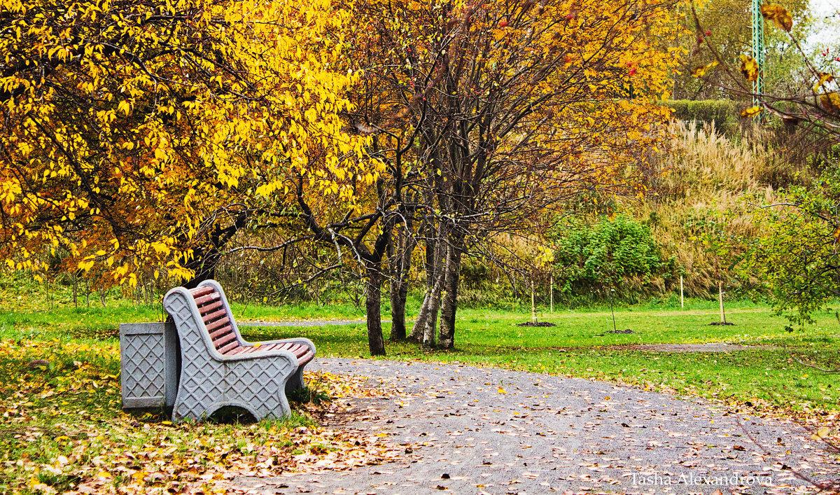 Осень - Tasha