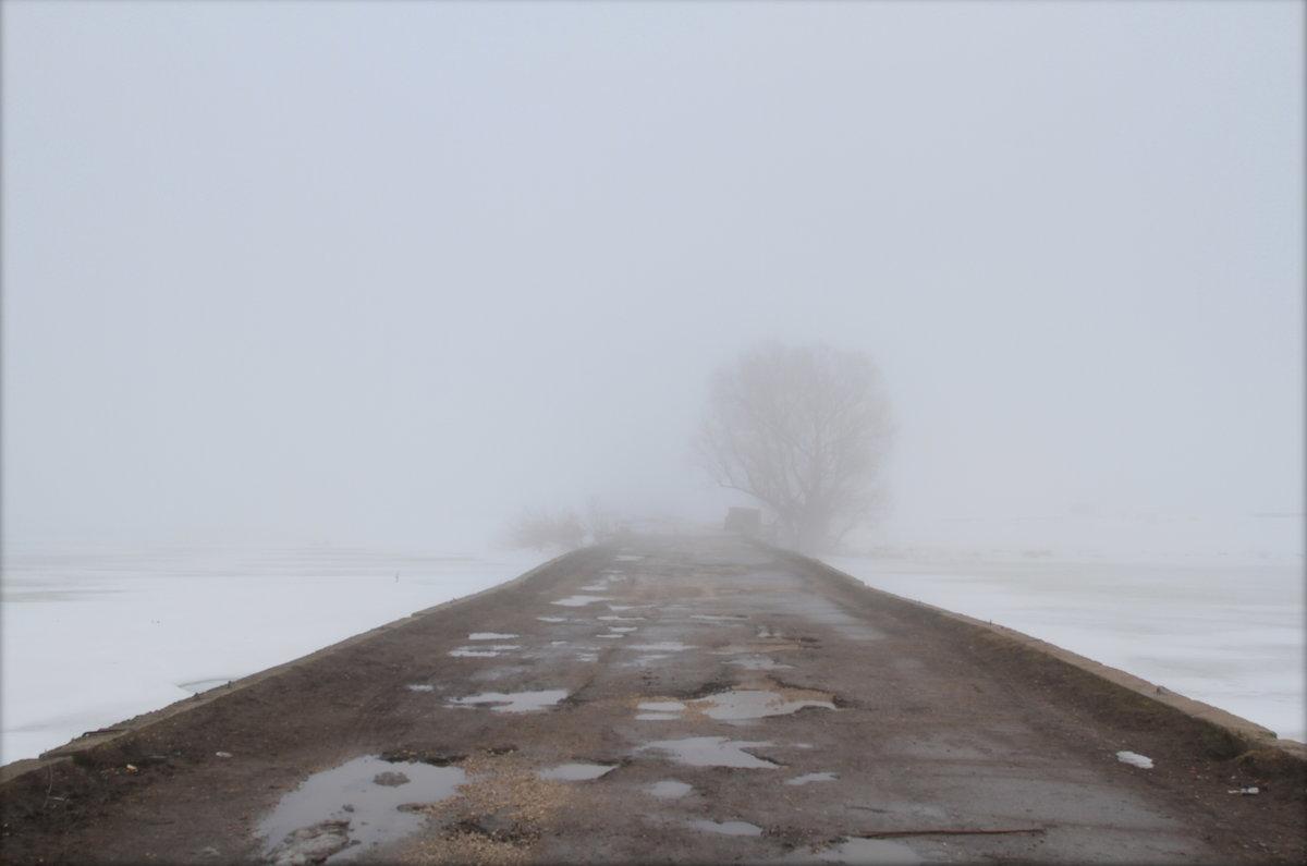 В туман - ninell nikitina