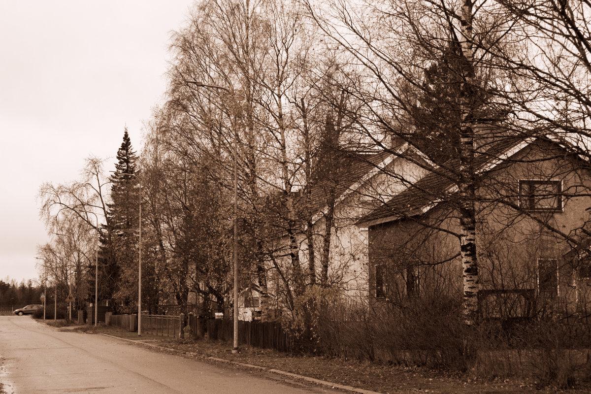 Осенняя улица - Aнна Зарубина