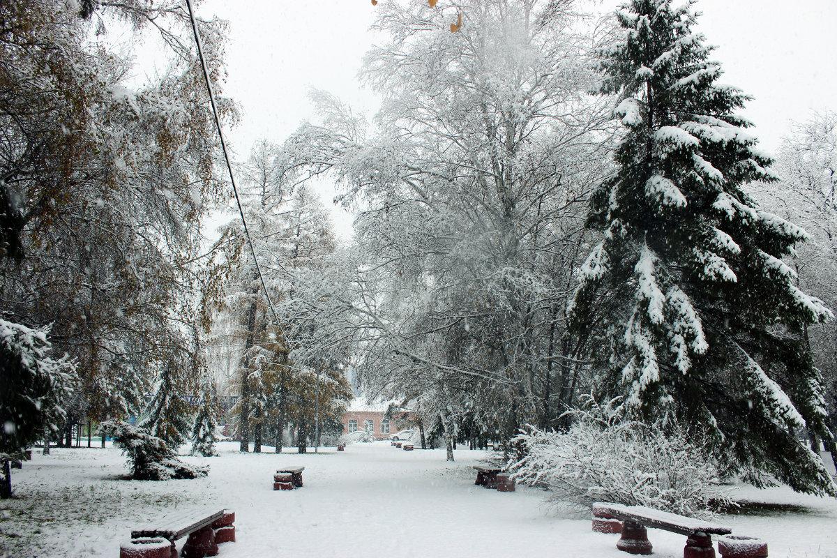 Пришла зима - раиса Орловская