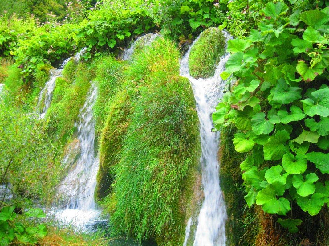Водопад на Плитвицких озерах (Хорватия) - elena