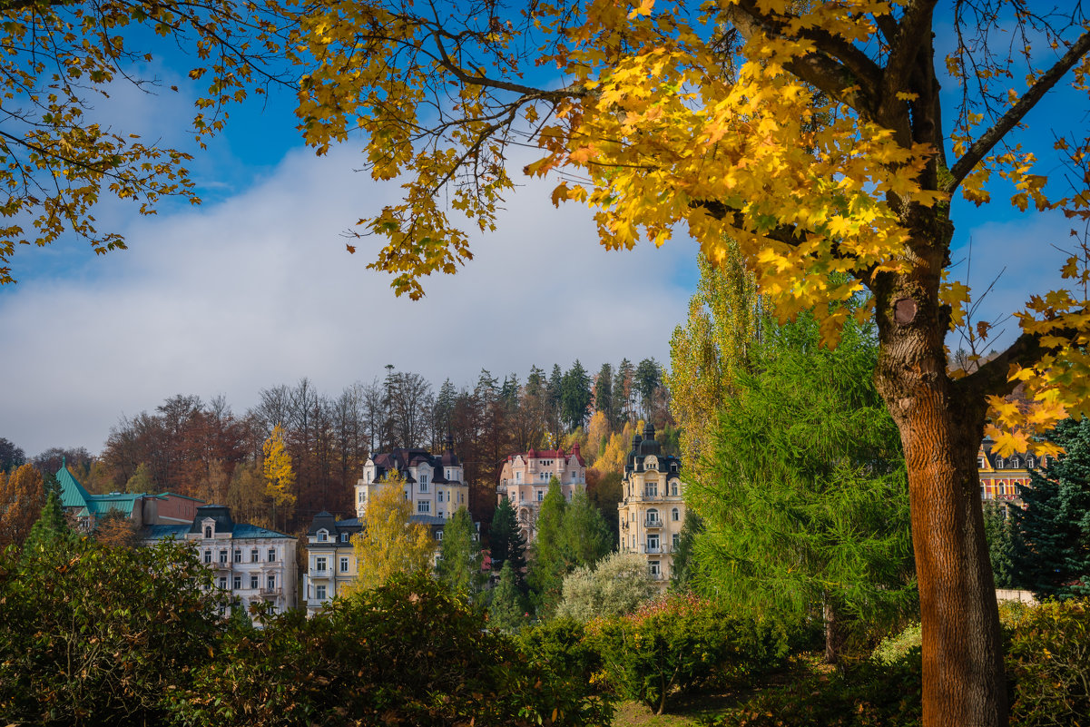 Осень в городе Марианские лазни - Vasiliy V. Rechevskiy