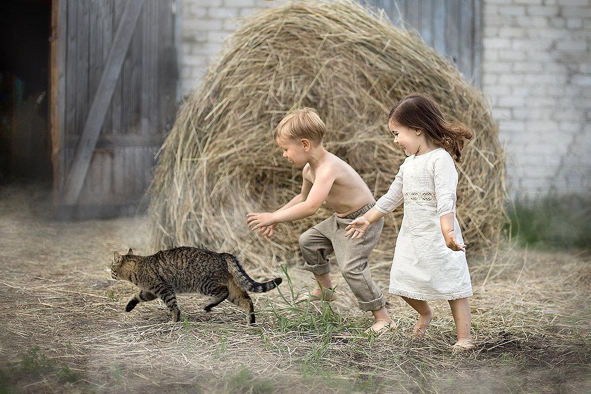История одного кота - Юлия