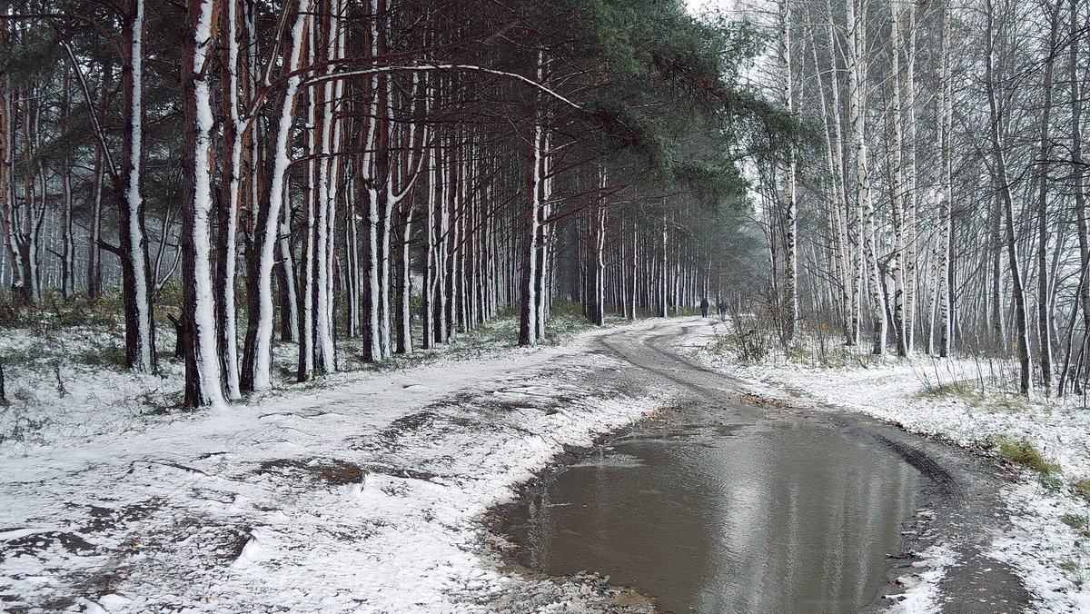 Первый снег на опушке леса, на берегу Волги - Николай Белавин