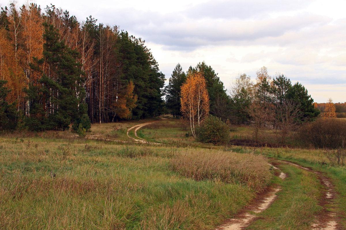 дорога осени - оксана