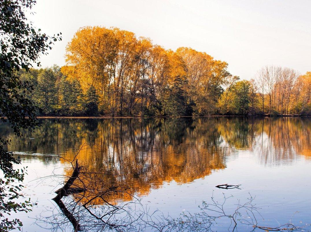У озера - Надежда