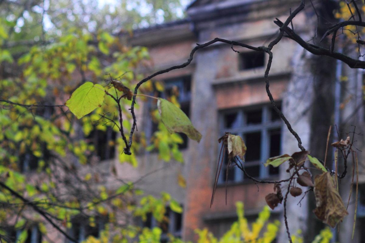 Осеннее уныние - Юрий Гайворонский
