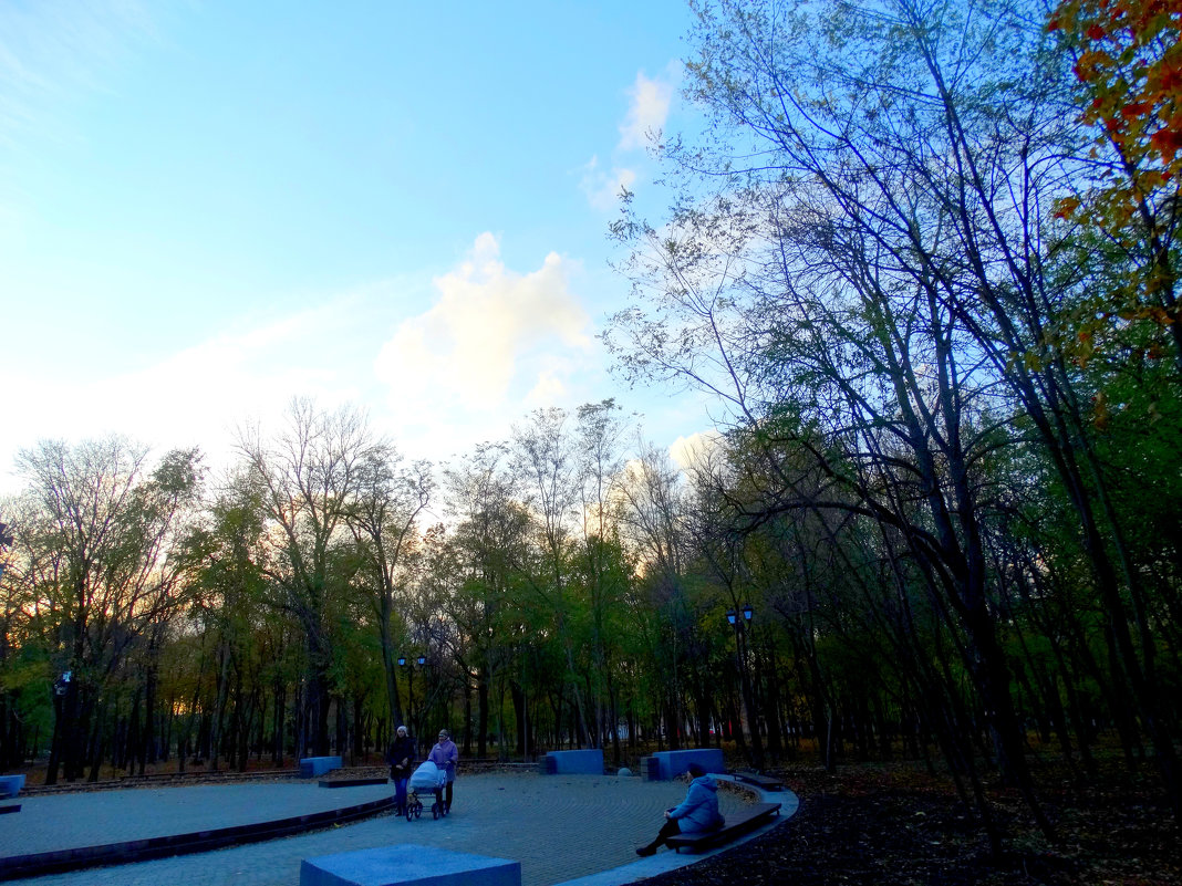 Вечерняя прогулка в парке... - Тамара (st.tamara)