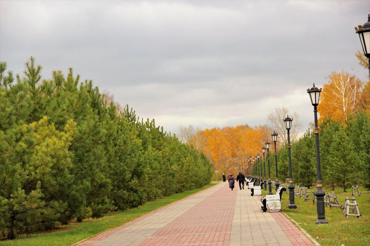 дорожка в парке - венера чуйкова