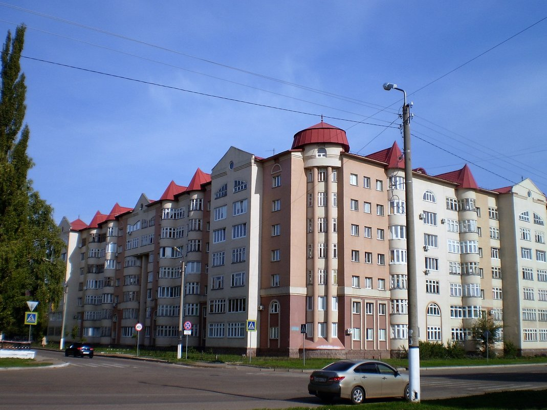 Дом с башнями - венера чуйкова