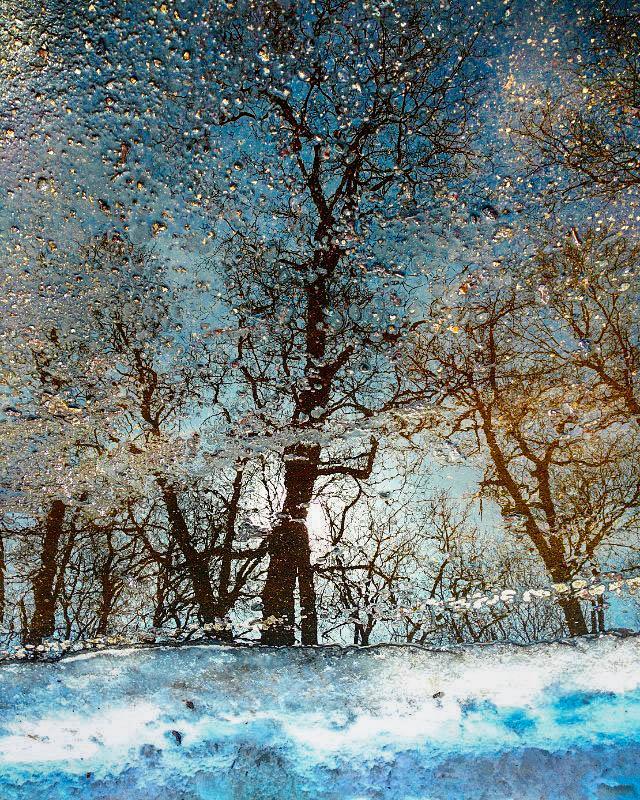 Пейзажи на асфальте - ирина лузгина