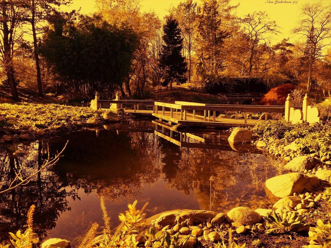 Золотая осень - Nina Yudicheva