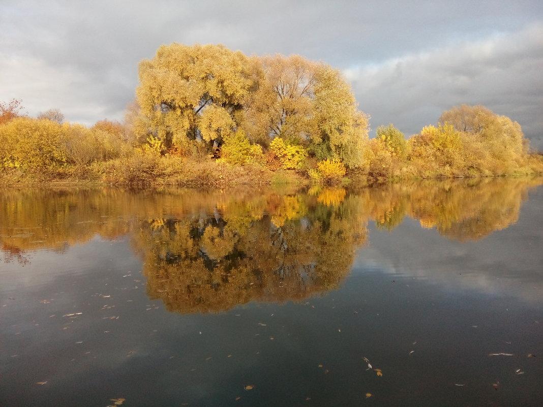 Зеркало - Евгения Куприянова