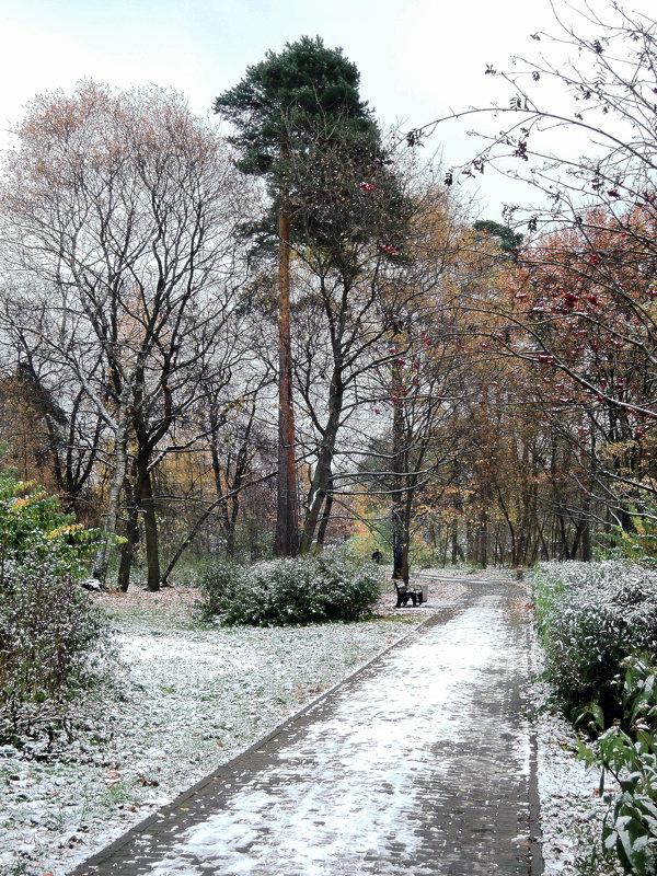 В парке - Денис Масленников