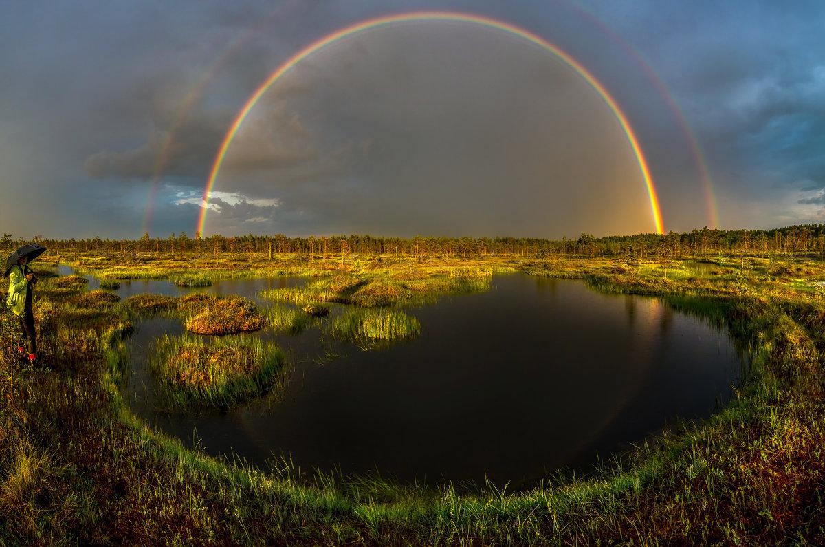 Удача во время ливня на болоте - Фёдор. Лашков