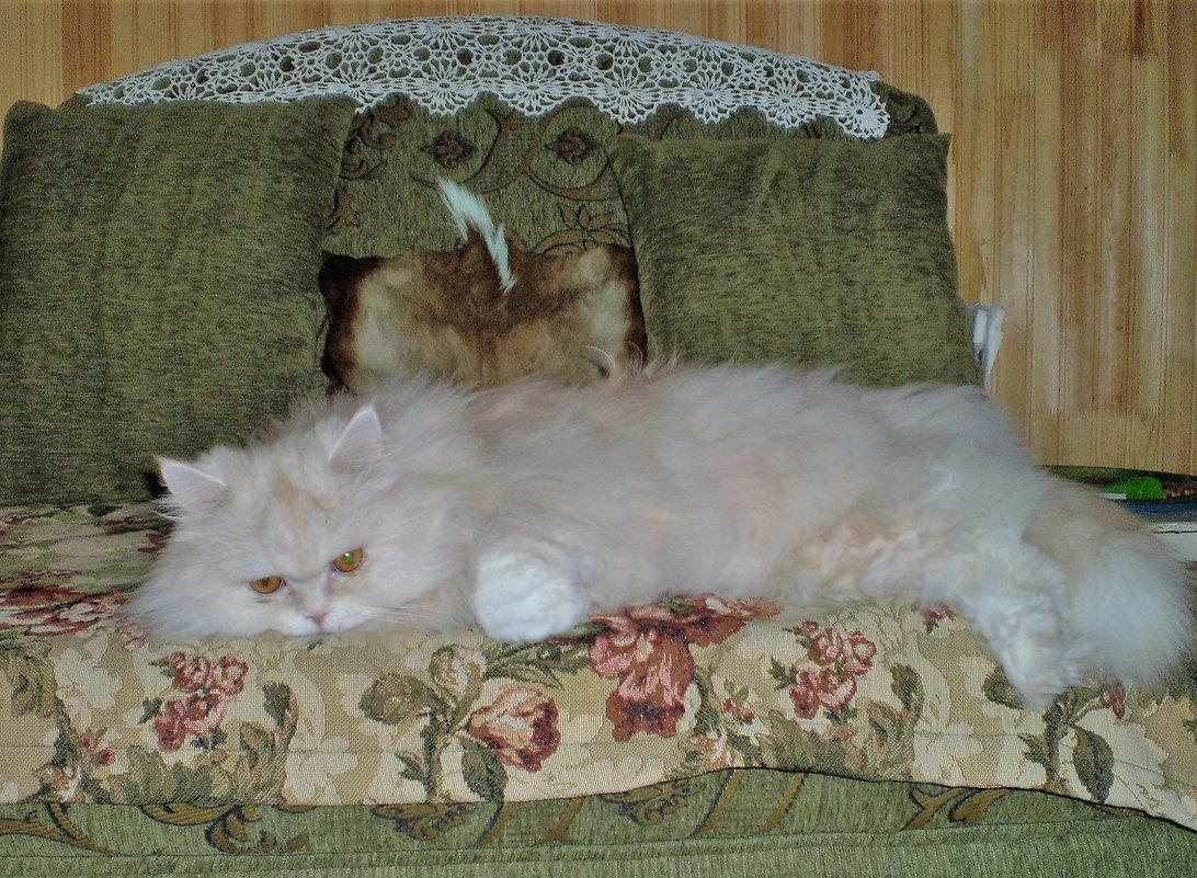 Любимая позиция на своем диванчике - венера чуйкова
